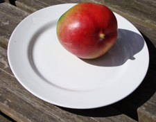 The Mango on a Plate 11